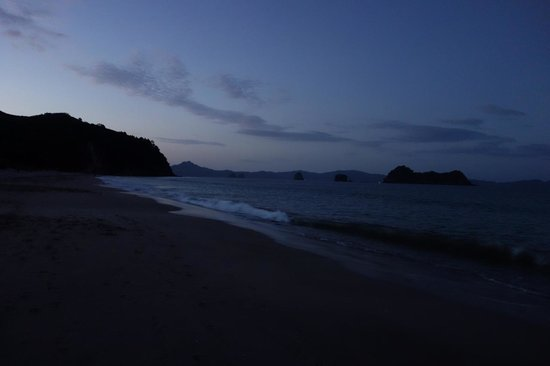 Hahei Oceanfront:                   walk on beach at night