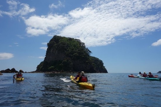 ‪‪Cathedral Cove Kayak Tours‬:                                     kayaking