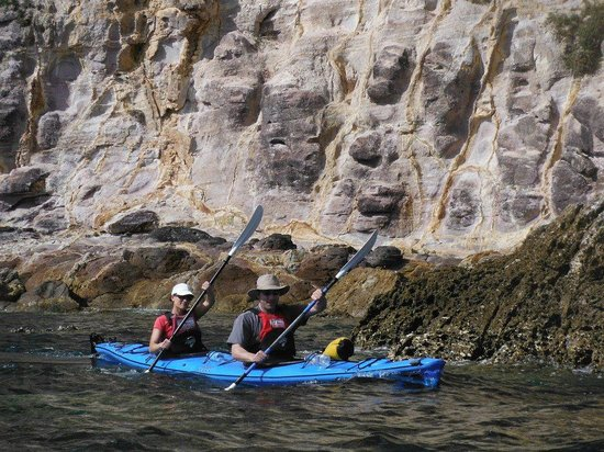 Cathedral Cove Kayak Tours:                                     kayaking