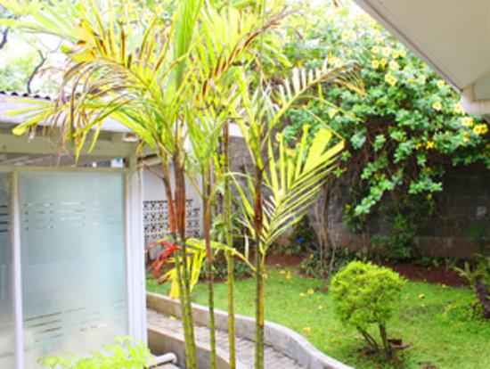 De Riau Motel / Pavilion : Garden