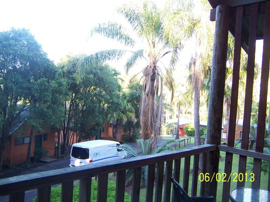 Paradise Palms:                   Looking out from our unit