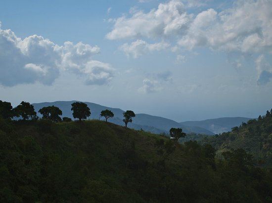 The view from Mount Edge Guest House in the Blue Mountains, Jamaica.