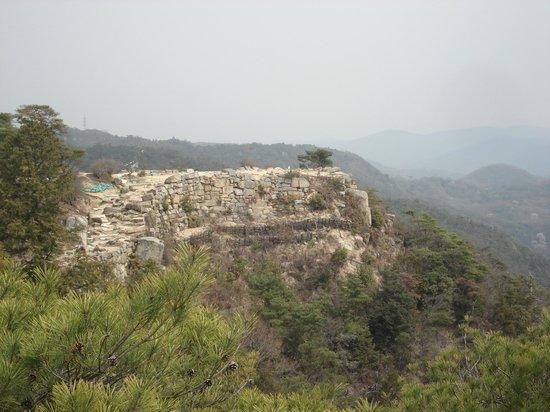 Kinojo Iwaya:                   第五水門から見た絶壁の石垣