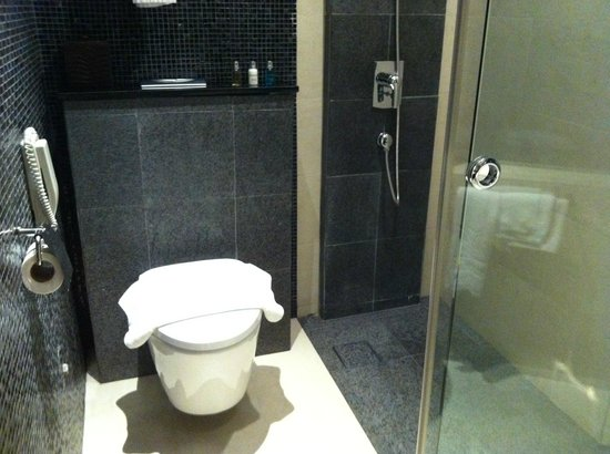 Wangz Hotel:                   Shower and toilet