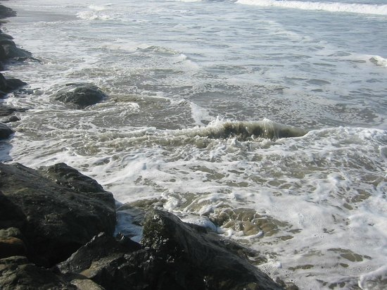 Surfside Resort 사진