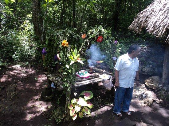 Punta Laguna Nature Reserve: El chaman malla!