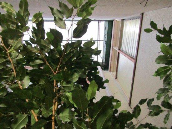 Hotel Rincon de San Jose:                   puit de lumier