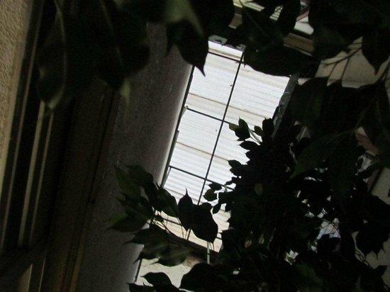 Hotel Rincon de San Jose:                   puit de lumiere