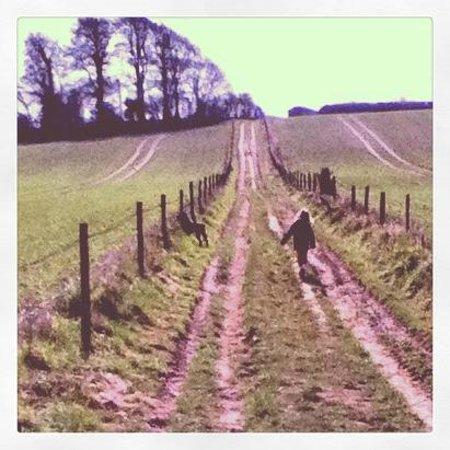 Longbarn House : The Drove, 6 Penny Gate Walk