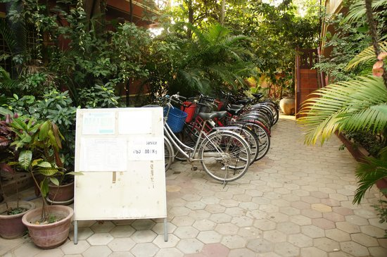 Bou Savy Guest House:                   Bicycle Rentals