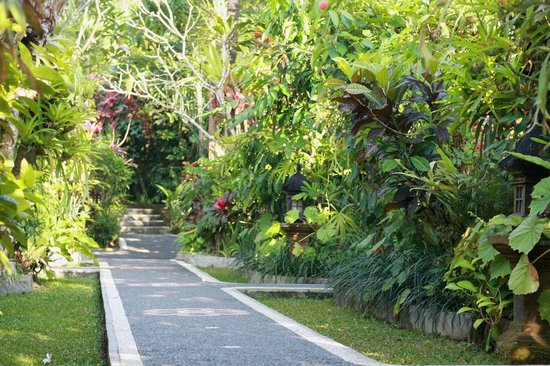Sama's Cottages and Villas: main pathway