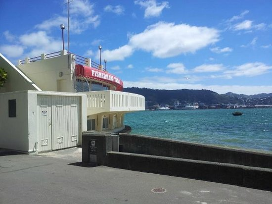 Oriental Bay: Great day