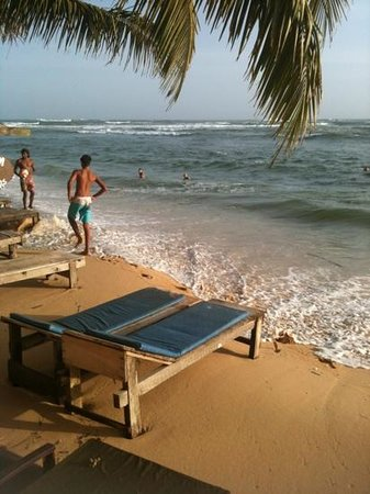 Hotel Ocean Hill:                                                       unawatuna beach