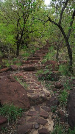 Tussen-I-Bome Guest Farm: Stairs leading to rock pool