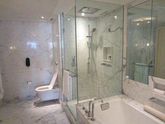 The Bathroom Shower Area And Bathtub Picture Of The Taj Mahal