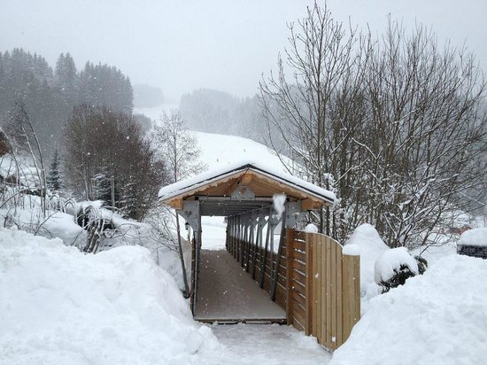 Chalet Martinet :                   Bridge to the lift