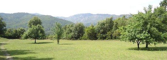 Palazzu Verde: Parc