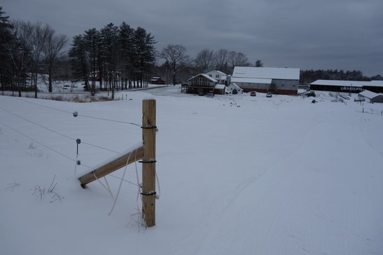 Harris Farm Cross Country Skiing
