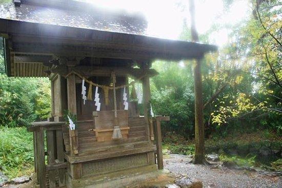 Tosa Shrine:                   雨が降っていたので、あまりキレイな写真ではありませんが・・・