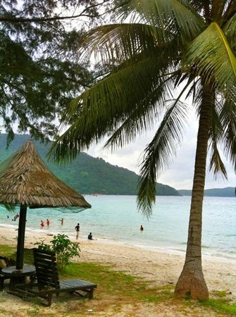 Perhentian Island Resort:                   beach