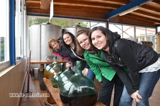 Wine Tour Valencia: Colleen & friends from USA