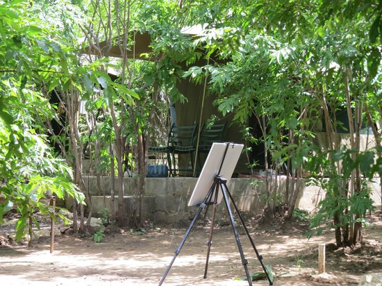 Kwalape Safari Lodge:                   AT the safari tent