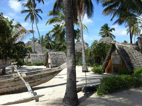 Drifters Lodge:                   Strandbandas