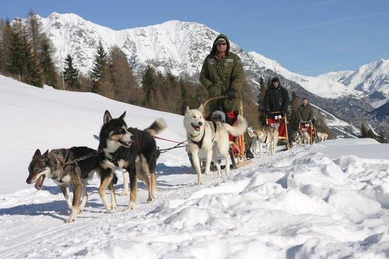Centro Italiano Sleddog Husky Village : Le nostre escursioni
