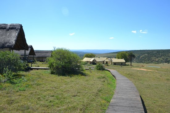 Gorah Elephant Camp:                   Tents, manor house, waterhole