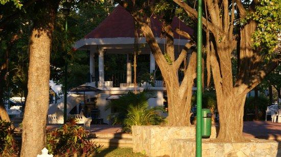 Cafe Huatulco