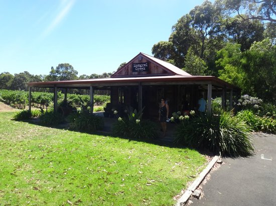 Mongrel Creek Wines