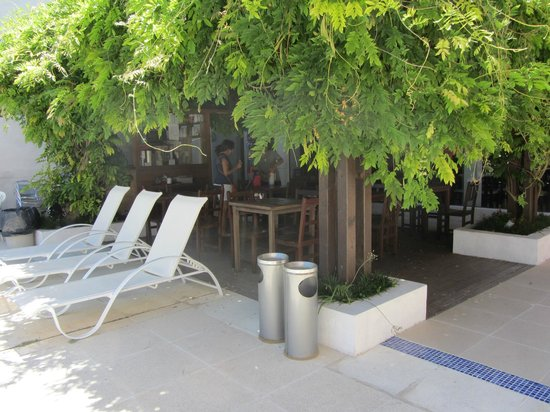 Hotel Italiano:                   barcito bajo la glicina
