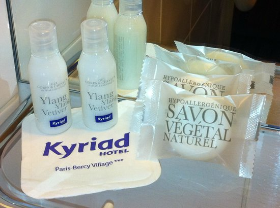 Kyriad Hotel Paris Bercy Village: PRODUITS D'ACCUEIL