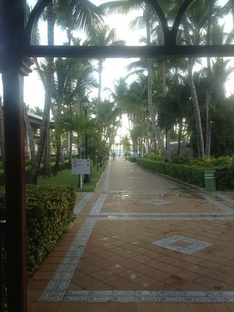ClubHotel Riu Bambu:                                     walkway to beach !