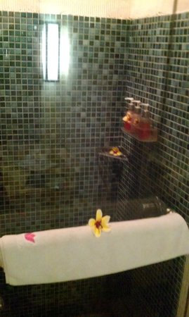 Kyriad Villa & Hotel Seminyak: Shower Area!
