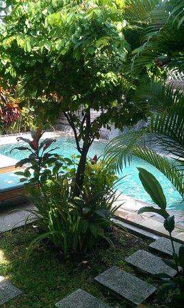 Kyriad Villa & Hotel Seminyak: Private Pool!