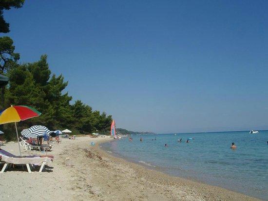 Poseidon View Hotel: Fab Beach