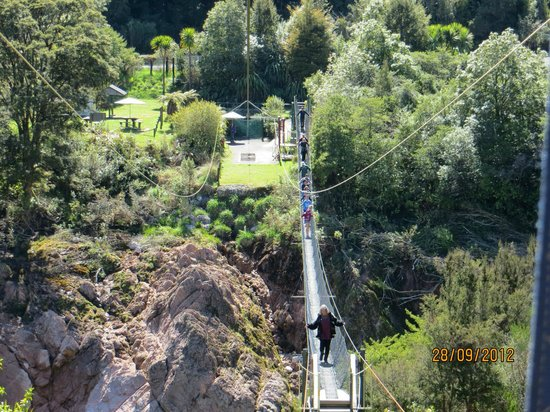 Buller Gorge Swingbridge Ltd:                   vista del tandem