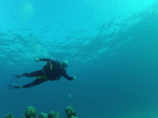 Scuba Total Cancun:                   buceando en el museo submarino