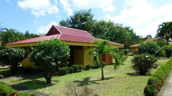 Arenal Country Inn:                   the cabin