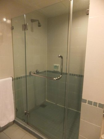 Nomad SuCasa All Suite Hotel:                   2 bedrm Aprtmt - Guest Rm toilet no bathtub