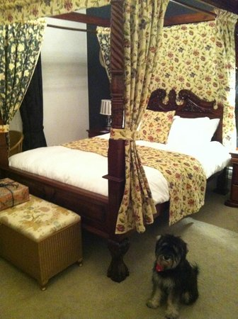 ‪‪Glendon Guest House‬:                   The four poster room with our little puppy :)