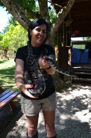 Lawnwood Snake Sanctuary :                   Handling a python