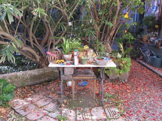 Moulin de la Croix: jardin