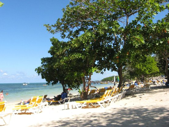Iberostar Rose Hall Beach Hotel:                   sun, shade - whatever you want on the beach