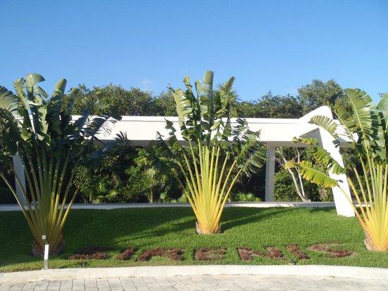 Grand Sirenis Riviera Maya Resort & Spa:                   grand sirenis :)