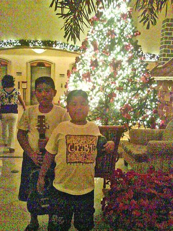 Cebu City Marriott Hotel: Lobby Xmas tree-Nice business hotel