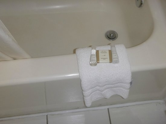 Baymont Inn & Suites Universal Studios:                   Shampoo y Rinse