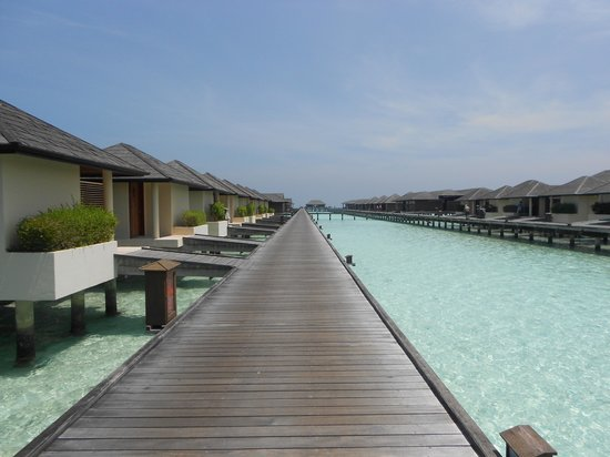 Paradise Island Resort & Spa:                   Water Villas