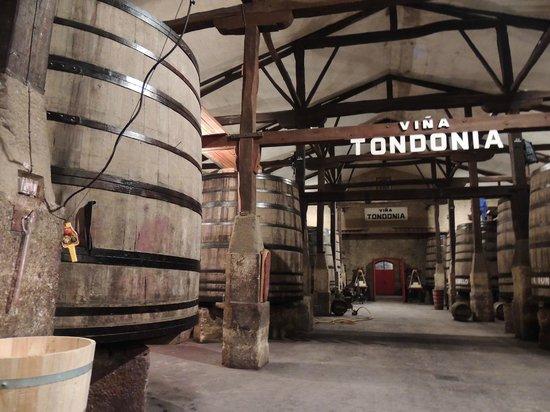 Bodegas Lopez de Heredia Vina Tondonia: interior